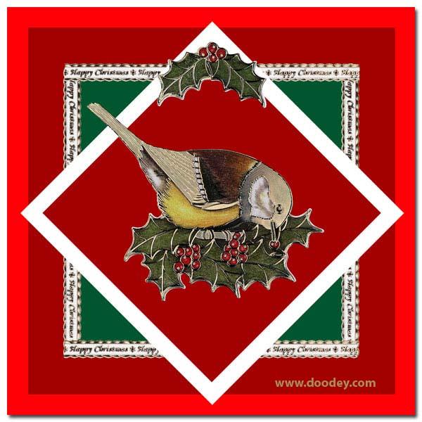 christmas card with bird and textborder
