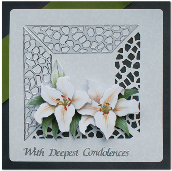3D sympathy cards package
