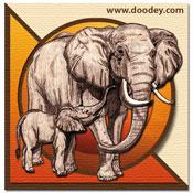 3D safari minikaartje olifant met jong