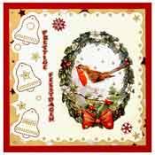 borduur kerstkaart met roodborstje