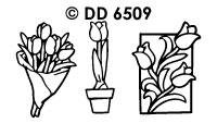 DD6509 Tulpen Divers