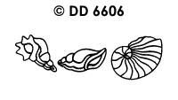 DD6606 Schelpen (2)