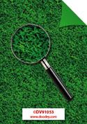 DV91053 achtergrondvel gras