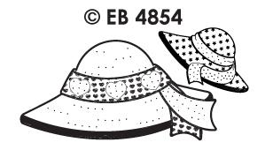 EB4854 borduursticker hoed hartjes