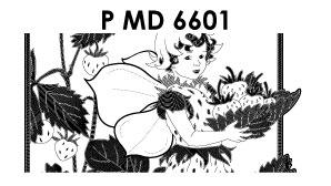 ©PMD6601