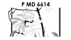 ©PMD6614
